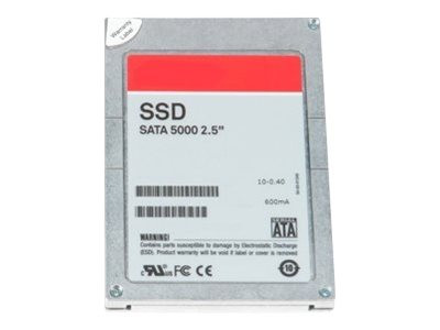 Dell : 256GB 2.5IN SERIAL-ATA SSD HIGH PERFORMANCE