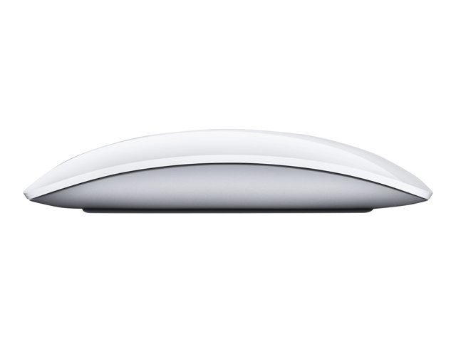 Apple : APPLE MAGIC MOUSE 2 (mac)